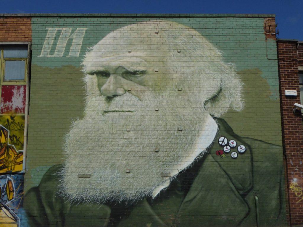 ROCKET01 - Charles Darwin - 84 Sydney st