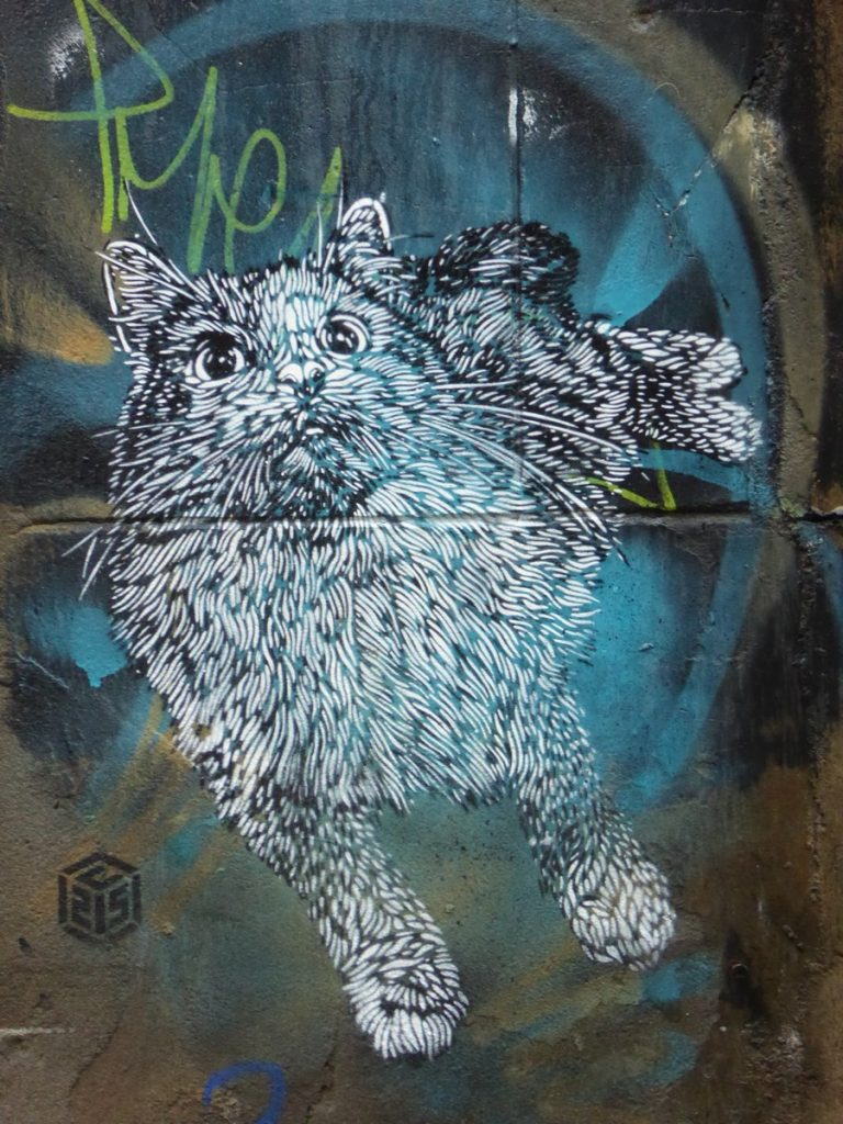 C215 - Manchester - Back Piccadilly & Paton st
