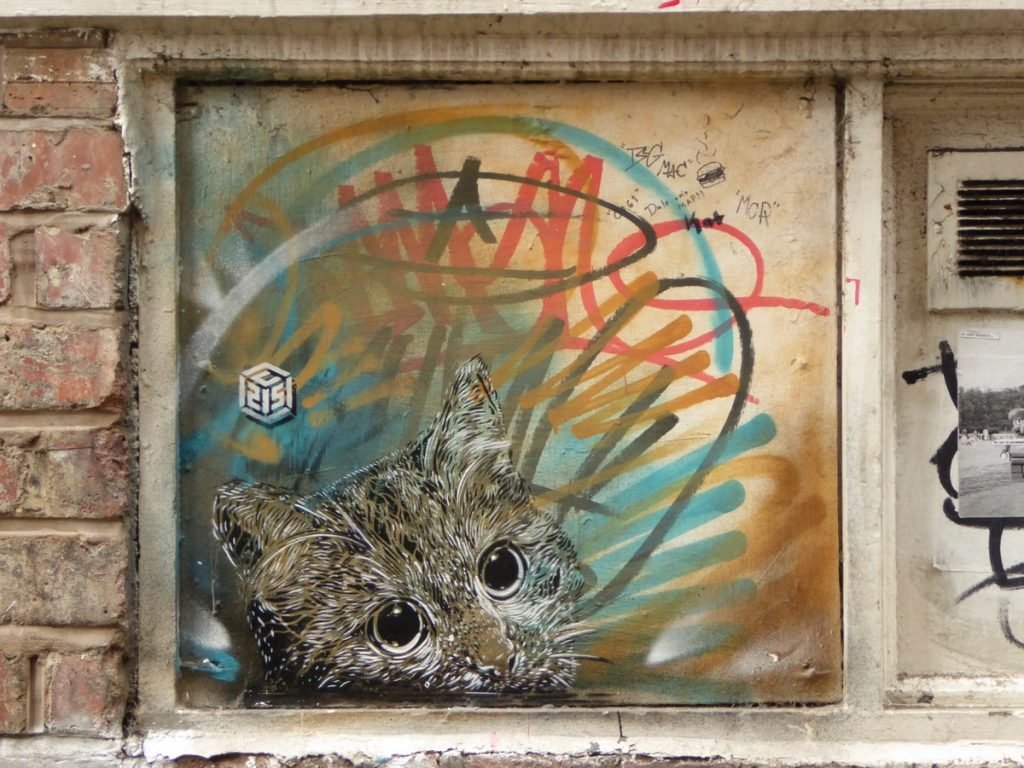 C215 - Manchester - Cavell st ?