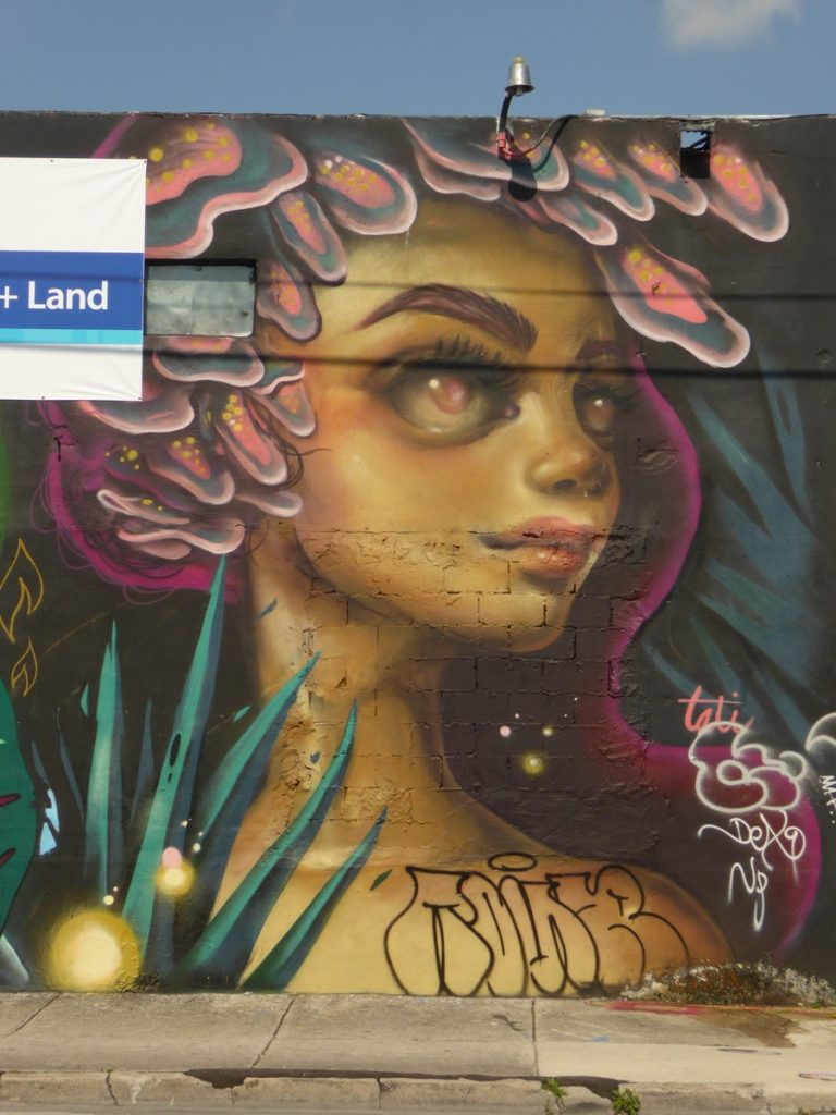 TATIANA SUAREZ - Miami - NW 2nd av & NW 20th Terrace